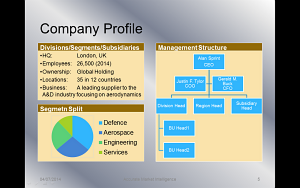 Company Profile Example